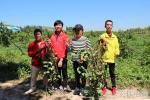 孟氏伟业团队成员在红薯基地收割红薯
